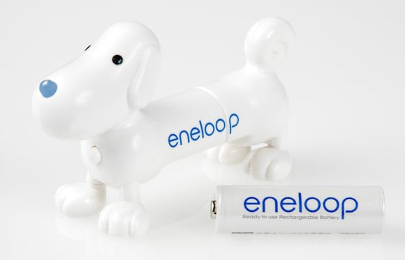Picture of eneloopy the dog